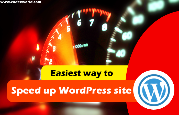 Speed up WordPress site instantly - CodexWorld